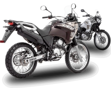 home-tenere_250-bike.jpg